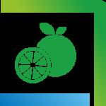 compartiment-legume-fructe